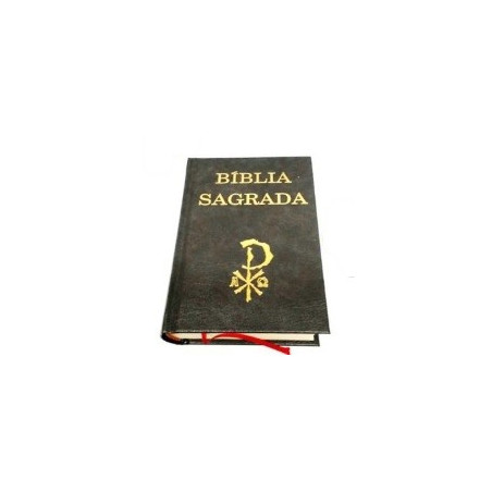 biblia sagrada – pequena