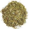 arruda – planta 100gr
